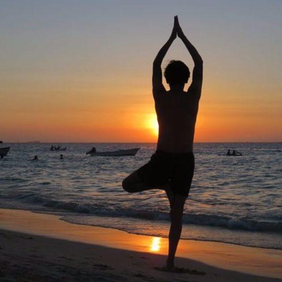 Yoga Baum - Stabilität und Harmonisierung
