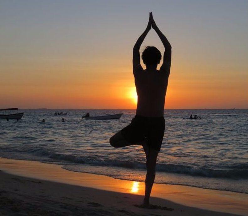 Yoga Baum – Stabilität und Harmonisierung