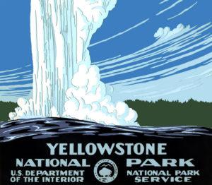 Zum Schutz von Grizzly, Bison & Co – Nationalparks