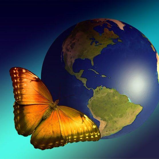 Die Welt kümmert sich - um gefährdete Arten