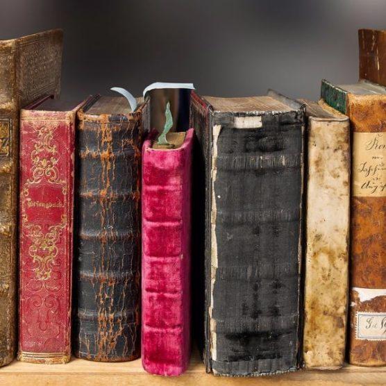 Gute Nachricht für alle Bücher-Fans!