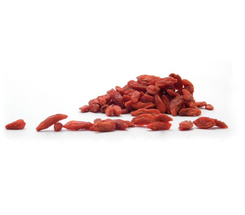 Goji-Beeren im Eigenanbau – Superfood geht günstig