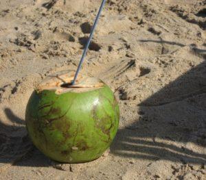 Kokoswasser – das schmeckt nach Sommer