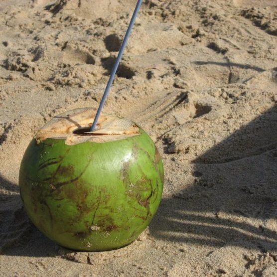 Kokoswasser - das schmeckt nach Sommer