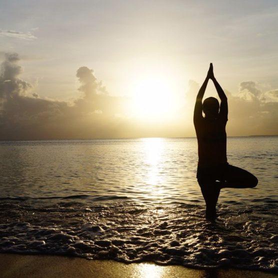 Yoga Baum - Bleib standhaft!