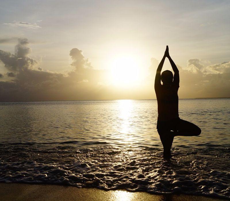Yoga Baum – Bleib standhaft!