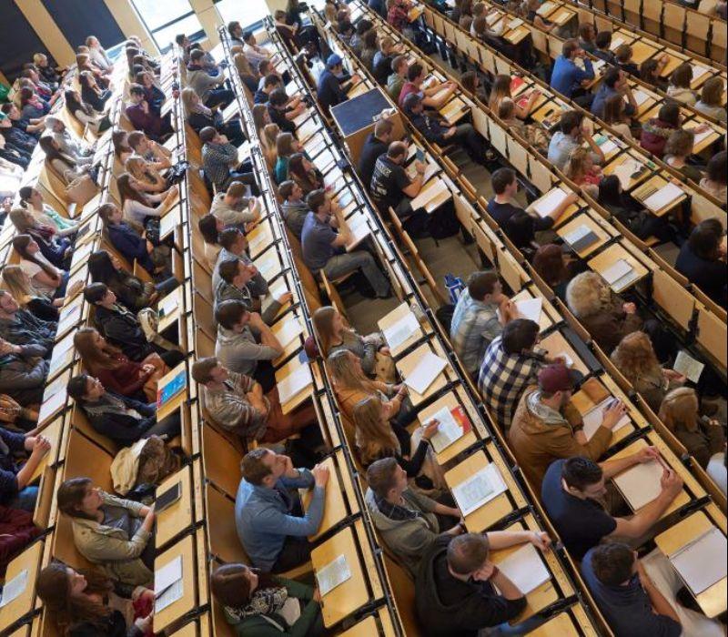 Studienerwartungen und Studienwirklichkeit