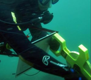 Forscher helfen Korallenriff auf die Sprünge