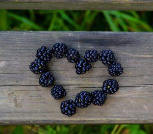 Süßes ohne Reue: Brombeer-Nektarinen-Salat