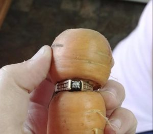 Good Fact – Verlobungsring in Möhre