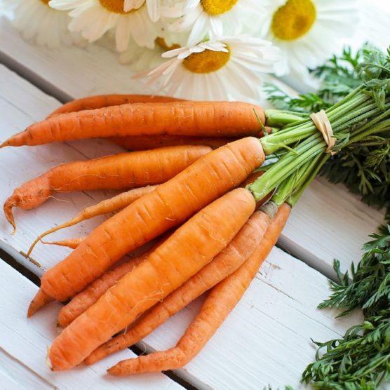 Von der Pflanze bis zur Wurzel gesund: Karotten